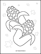Thanksgiving Corn Coloring Page